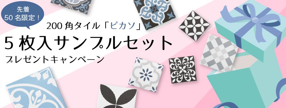 発売記念★「ピカソ」サンプルセットプレゼント!
